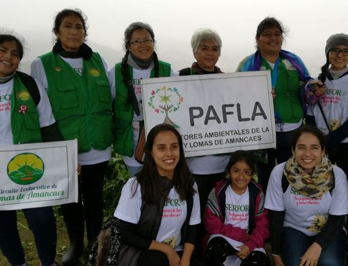 Fortalecimiento de organizaciones sociales en áreas del Hábitat, gestión de riesgo y cambio climático, en el Centro Histórico de Lima y Lomas de Carabayllo (2018 – 2021)